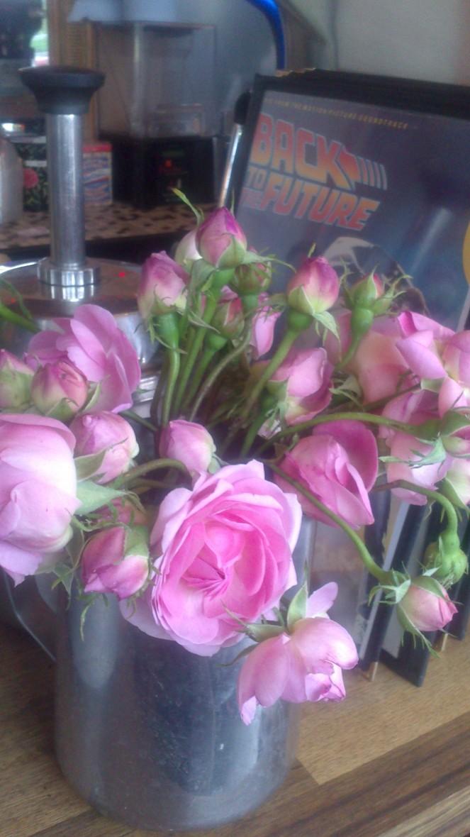 broca roses