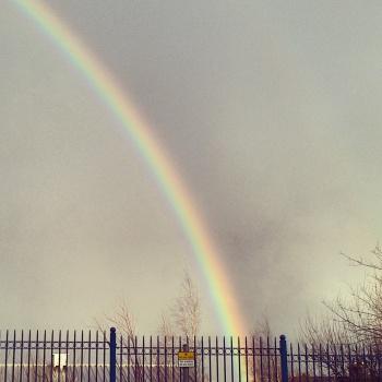 rainbow IG